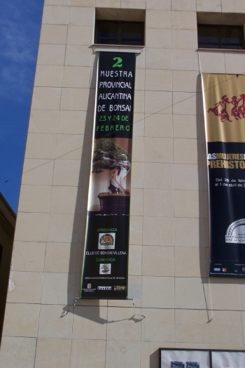 Bonsai 2ª Muestra Provincial Alicantina - cbvillena