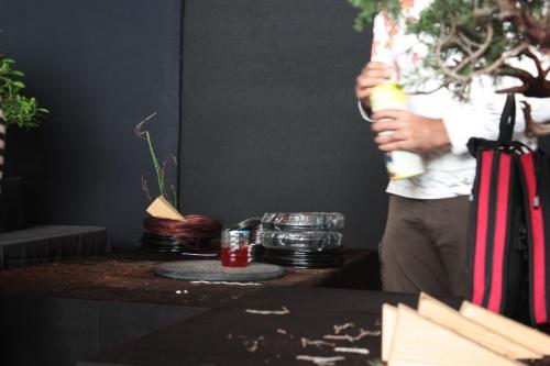 Bonsai Liquido para blanquear madera - Bonsai Oriol