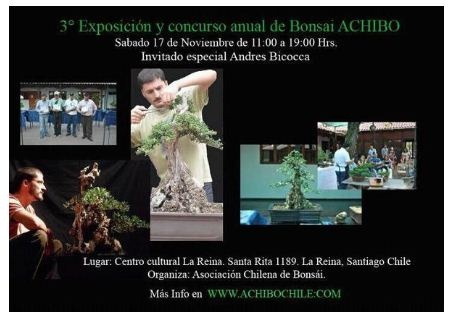 Bonsai 3ª Exposicion y concurso anual de bonsai ACHIBO - eventos