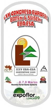 Cartel Congreso Europeo Lorca