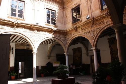 Bonsai Mas del Palacio de Guevara - Amigos del Bonsai Lorca