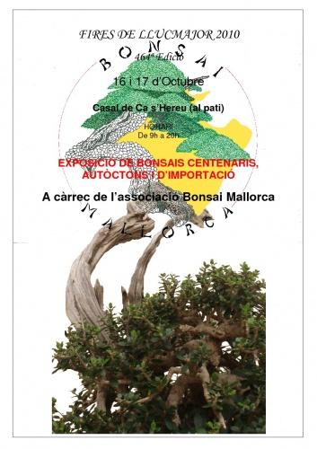 Cartel Exposició de Bonsais - Associació Bonsai Mallorca