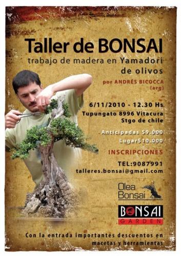 Bonsai Taller de Bonsai - Trabajo de Madera en Yamadori - eventos