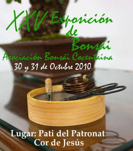 Bonsai XXV Exposicion Bonsai Cocentaina - eventos