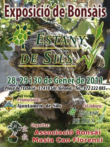 Cartel Exposicio de Bonsais Estany de Sils
