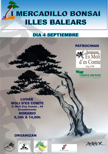 Bonsai I Mercadillo Bonsai Illes Balears - eventos