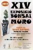 Cartel XIV Exposició Bonsai Muro - Fireta de Sant Antoni