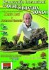 Cartel Demostración Internacional de Paisaje en Miniatura y Bonsai