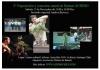 Cartel 3ª Exposicion y concurso anual de bonsai ACHIBO