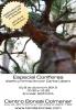 Cartel Especial Coníferas, diseño y formación por Carlos Lázaro