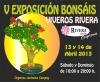 Cartel V Exposición Bonsái - Viveros Rivera