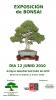 Cartel Exposicion Bonsai 2010 - Asociacion de Jaen