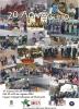 Cartel XX Aniversario Asociacion Bonsai Benicarlo