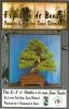 Cartel Exposicion de Bonsai Ribera baixa